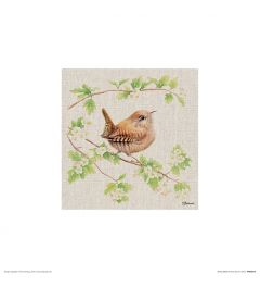 Wren Art Print Jane Bannon 30x30cm