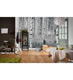Wood - Black White
