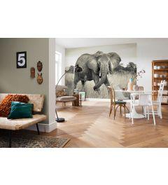 Elephant 4-part Non-Woven Wall Mural 368x248cm